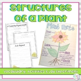 Plant Structures