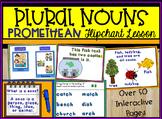 Plural Nouns ActivInspire Promethean Flipchart Lesson - ov