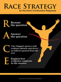 RACE Strategy Poster (18x24 inch Giclee Print)