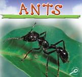 Ants [Interactive eBook]
