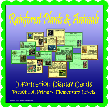 Rainforest Plants & Animals Display Cards (Included~Rainfo