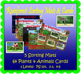 Rainforest Sorting Mats and Cards (Included in Rainforest: