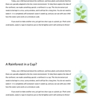 Rainforest in a cup: Exploring the water cycle with young