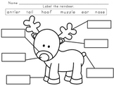 Reindeer Labeling
