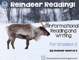 Reindeer Reading! Informative Reading and Writing {Bonus N