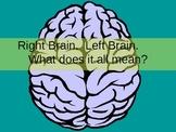 Right Brain/Left Brain Drawing PowerPoint