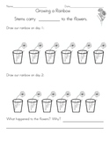 Science: Carnation Color  Worksheet
