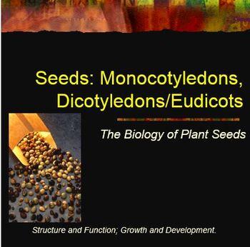 Seed Germination Lab Notebook