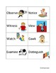 Shades of Meaning Verb Cards - SEE