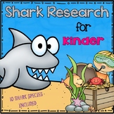 Shark Research for Kinder