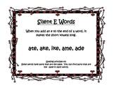 Silent E/Word Families Word Sort (ate, ake, ame, ike, ade)