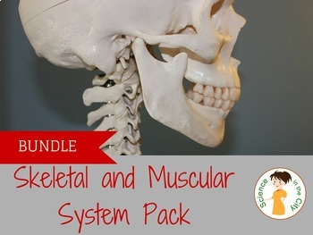 Skeletal and Muscular System Pack - Notes and Lab