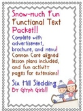 Snow-much Fun Functional Text Reading Packet
