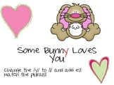 Some Bunny Loves You { ies plurals}