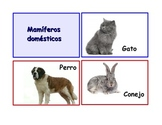 """Spanish Flash Cards """"Los animales"""" ,Animals and their clas"""