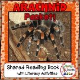 SPIDERS - Arachnids Packet of Literacy & Math Activities {CCSS}