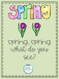 Spring, Spring What Do You See?