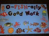 Fish Student Work Display