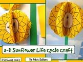 Sunflower Craft: {3-D Life Cycle of a Sunflower Craftivity