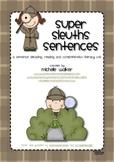 Super Sleuths Sentences