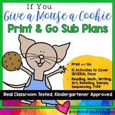 Super Speedy Sub Plans!  Activities & Projects for If You
