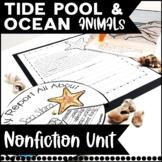 Tide Pool and Ocean Animal Fun Unit! Common Core Aligned