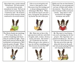 Title / Main Idea Paragraph Cards and Activities