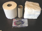Toilet Paper Geometry Project - Surface Area and Volume