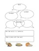 Turkey Time:  Language Focus & Literacy Centers for Thanksgiving
