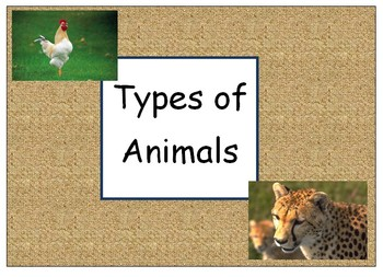 Types of Animals - Classifying - English - Sorting Animals
