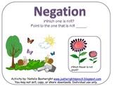 Understanding Negation