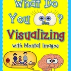 Visualizing with Mental Images Metacognition