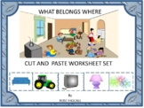 Autism: WHAT BELONGS WHERE-PK, K, Special Education, Autism