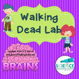 Walking Dead Lab (An Exploration of Speed, Velocity & Acce