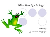 What Does Not Belong?  A Game of Categories