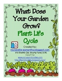 What Does Your Garden Grow? Plant Life Cycl