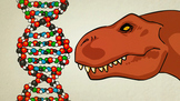 What is DNA and how does it work? - Animation