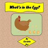 What's in the Egg:  Incubating Chicken Eggs