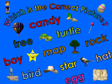 Which is the Correct Picture? - 250 Word Recognition Activity