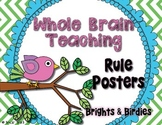 Whole Brain Teaching Rules - Brights & Birdies