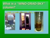 Winogradsky Columns Lab Overview with Results Presentation