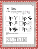 Word Family Cut & Paste -it -ip -in -ill -ing -ink -ice