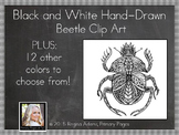 Black and White Beetle Clip Art