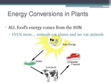energy conversion presenation