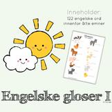 engelske gloser - full pakke