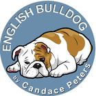 English Bulldog