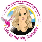 Life on the Fly School Counselor
